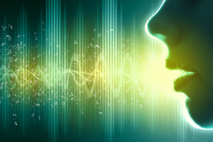 voice security